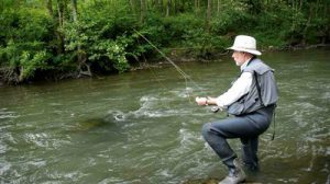 stock-footage-man-fishing-trout-in-river